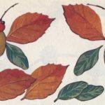 Бабочки (схема поделки)