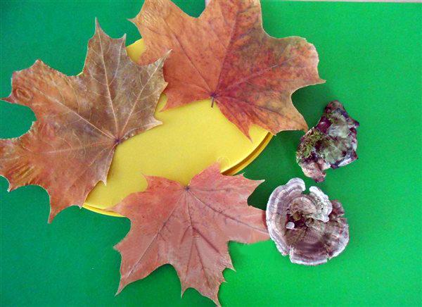 Основа (круглая пластиковая крышка), грибы и листья