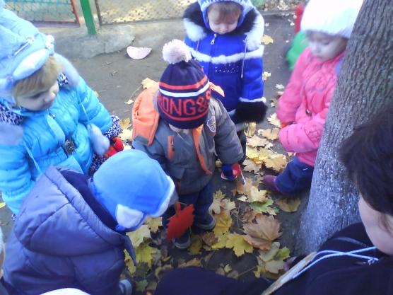 Дети рассматривают осенние листья