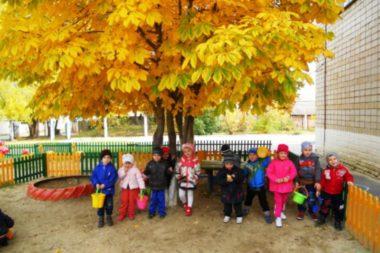 Дети с ведёрками стоят под деревом с жёлтой листвой