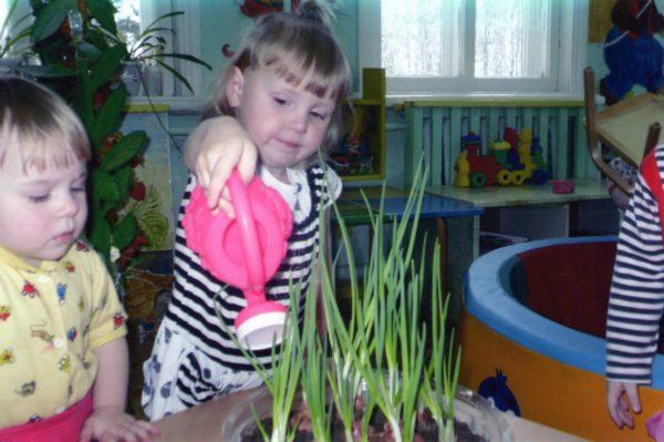 Дети поливают лук