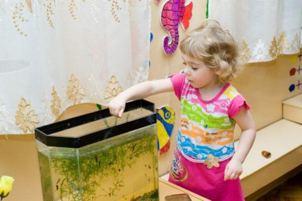 Девочка кормит аквариумных рыбок