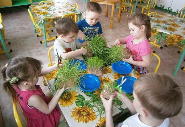 Дети в группе изготавливают поделки из травы на экологическую тему