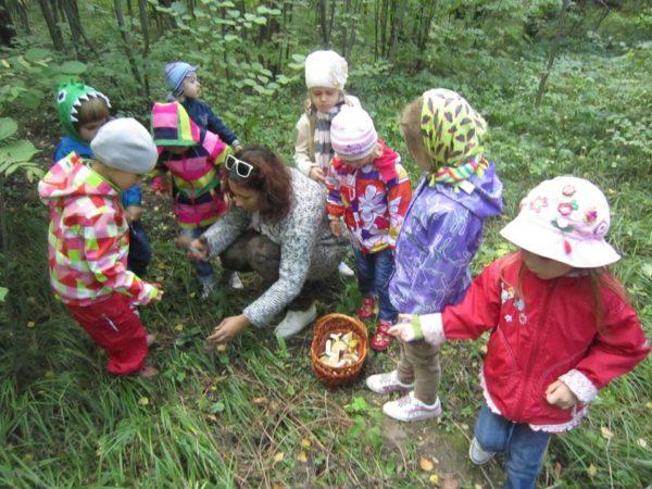 Дети и воспитатель рассматривают растения в лесу