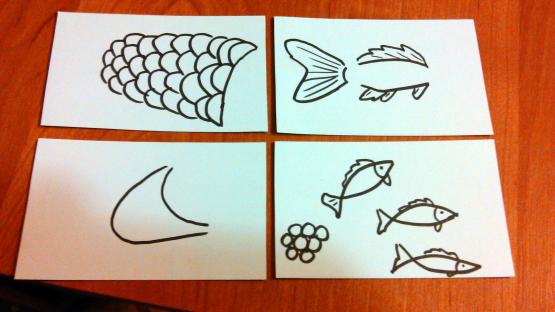На листах бумаги изображены части тела рыбы, икринки и мальки