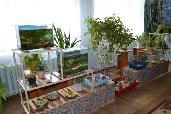 Живой уголок с аквариумами