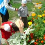 Малыши и воспитатель около цветочной клумбы