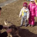 Воспитательница кормит собаку, дети наблюдают