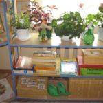 Стеллаж с комнатными цветами на верхней полке, коробками на второй и лейками на нижней