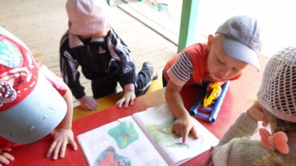 Дети рассматривают насекомых в книге