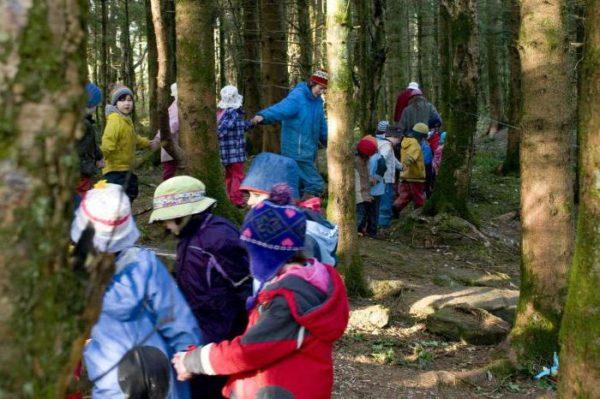Группа детей, держась за руки, проходит между деревьев
