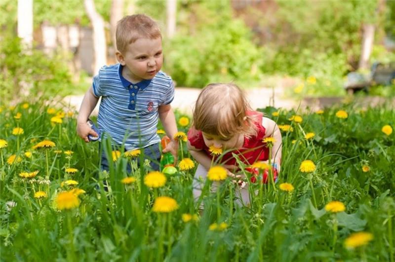 Дети рассматривают цветы