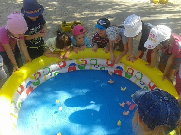 занятие детском саду знакомства окружающим миром