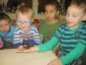 Дети рассматривают улитку