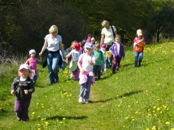 Дети и два педагога идут по поляне с жёлтыми цветами
