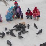 Дошкольники кормят голубей на прогулке