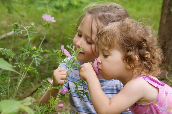 Две девочки нюхают цветы