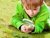 Мальчик рассматривает растения через лупу