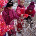 Дети рассматривают кустарник, покрытый инеем