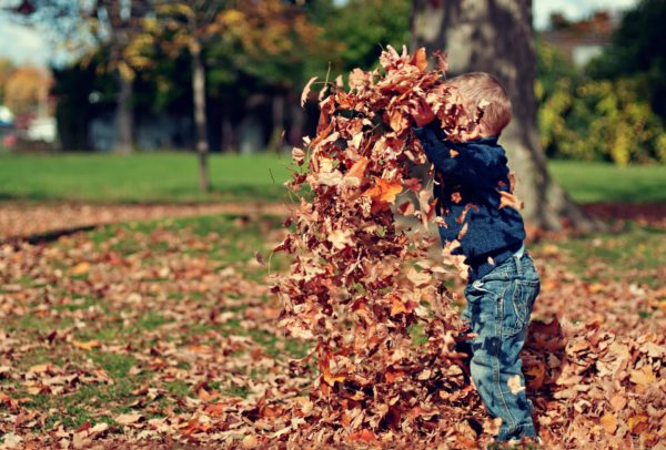 Ребёнок подбрасывает опавшие листья