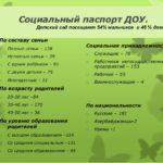 Статистическая информация о семьях воспитанников