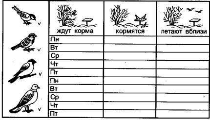 Страница дневника наблюдений за птицами