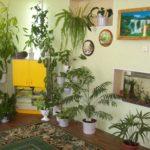 Внешний вид экологического центра с растениями