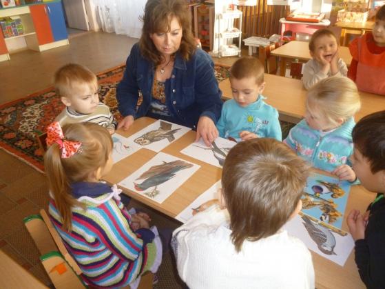 Педагог показывает детям картинки с изображениями птиц