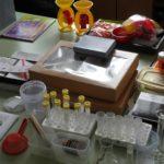 Мини-лаборатория в детском саду