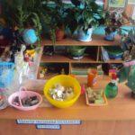 Центр познавательного развития с материалами для опытов и растениями
