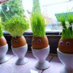 Человечки из яичной скорлупы, у которых волосы — зелёная травка