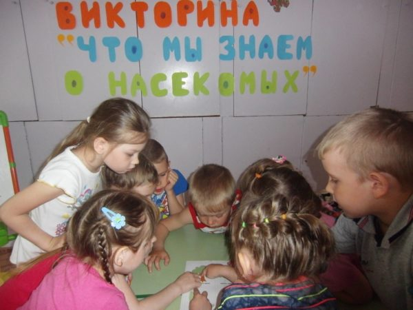 Дети участвуют в викторине «Что мы знаем о насекомых»