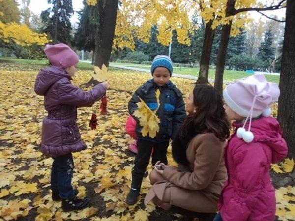 Дети показывают воспитателю собранные кленовые листья в парке