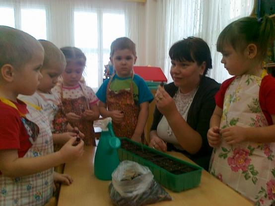 Дети вместе с воспитательницей рассматривают семена для посадки в лунки мини-огорода