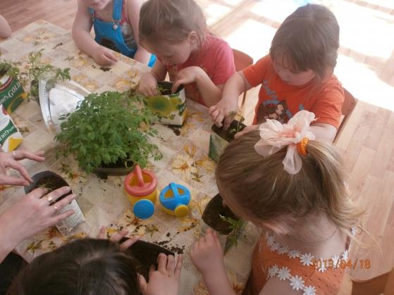 дети выращивают рассаду