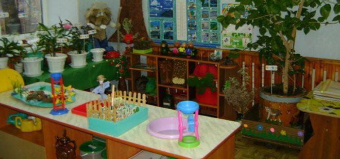Эколуголк на столах, расположенных буквой Г, и примыкающий к стене, слева дерево в горшке, стоящем в ящике