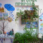 Экоуголок: слева от растений откидной столик с поделками, на стене макет дерева, над ним облако и тучка, слева на стене — календарь природы