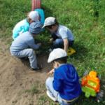 Дети на прогулке рассматривают муравьёв