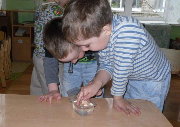 Два мальчика экспериментируют с водой