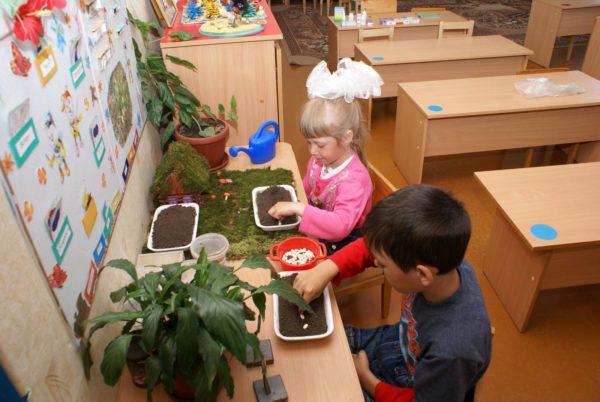 Мальчик и девочка занимаются посадкой семян в экологическом уголке