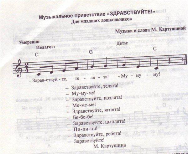 план работы музыкального руководителя на каждый день
