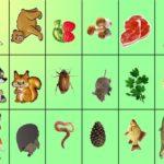 Карточки с изображениями животных и их пищей
