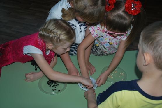 Три девочки и мальчик сортируют крупу по тарелочкам