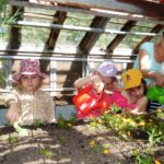 Воспитанники детсокго сада в теплице