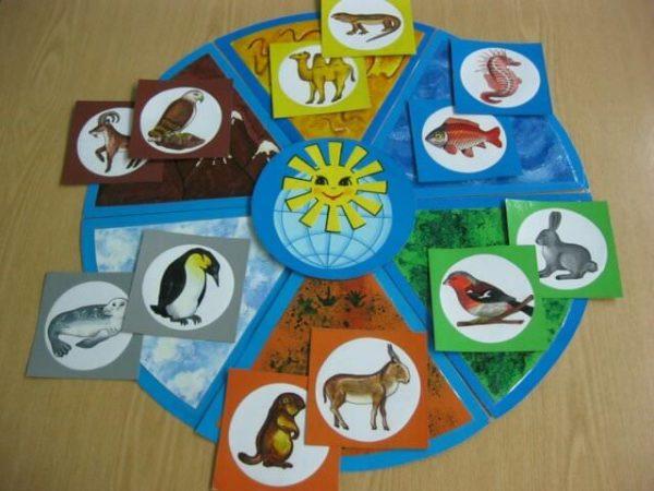 Круг с шестью сегментами (климатическими поясами) и карточки с животными