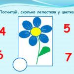 Цветок для счёта лепестков
