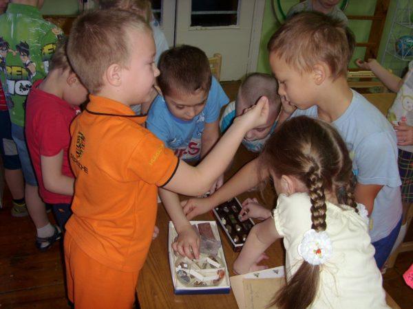 Дошкольники рассматривают коллекцию минералов