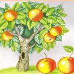 Яблоки на дереве задание по математике