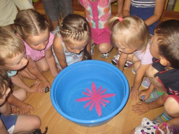Дети наблюдают опыт с водой
