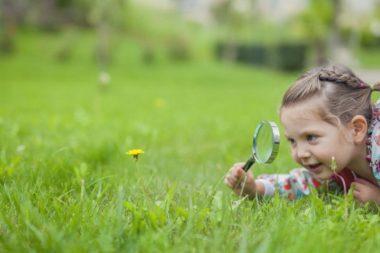 Маленькие дети исследует каждый объект в своём окружении и испытывают неподдельную радость от знакомства с миром.